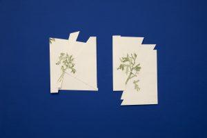 """""""Vernarbte Zeichnungen"""" Bleistift, Aquarell auf Papier, Garn"""